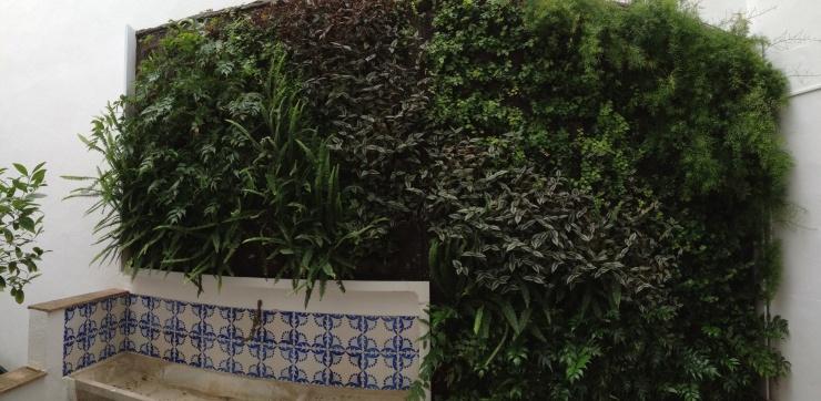 Jardín vertical en un patio interior